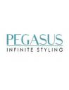 Manufacturer - PEGASUS